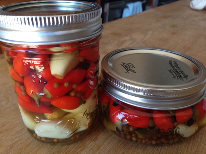 Pickled Hot Peppers & Garlic2
